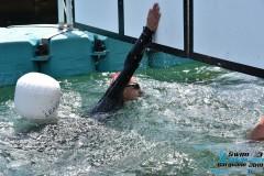 Swim-Lake-Gargnano-2019-350