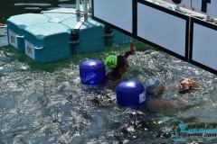 Swim-Lake-Gargnano-2019-475