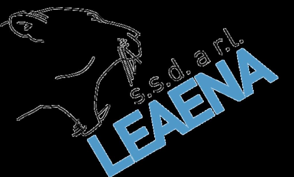 leaena-ssd